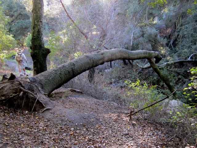Orange County hike