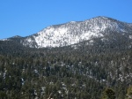 The summit of Mt. San Jacinto