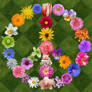 peace-sign-flowers