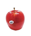 organic-red-apple_300