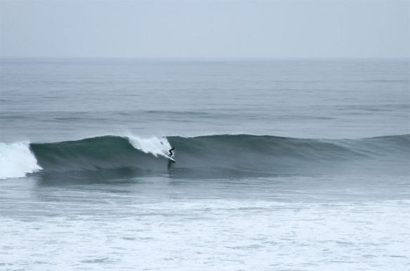 surf-WEB