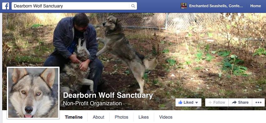 dearborn wolf sanctuary