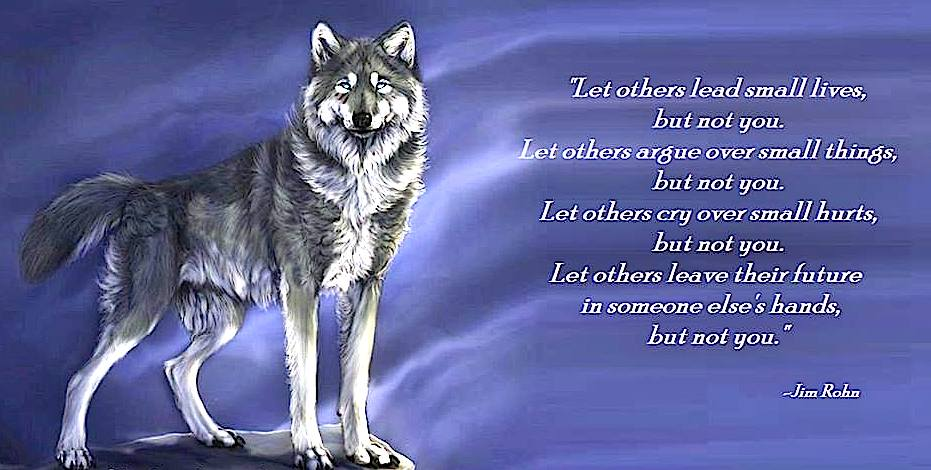 http://www.fanpop.com/clubs/wolves/images/34908704/title/wolf-poems-photo