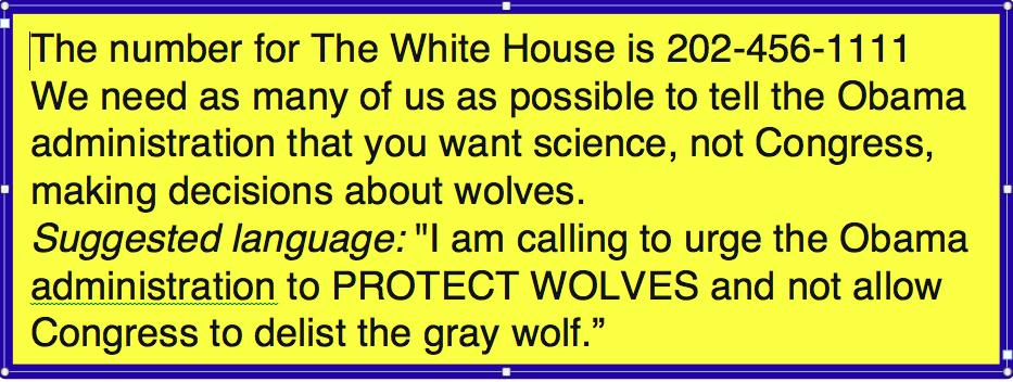 whitehousewolf