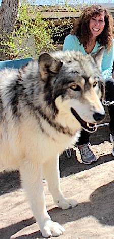Wolf Mountain Sanctuary
