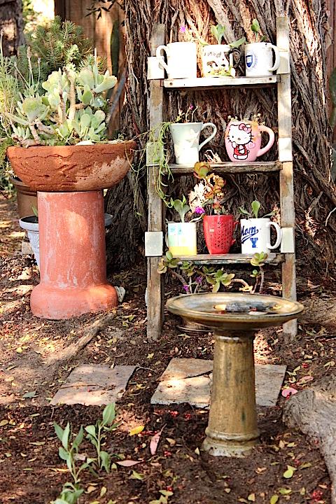 coffeecupplanters