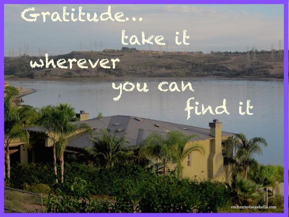 gratitudetexlagoon
